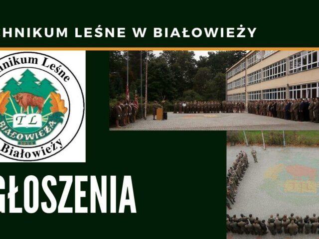 TL Białowieża ogłoszenia