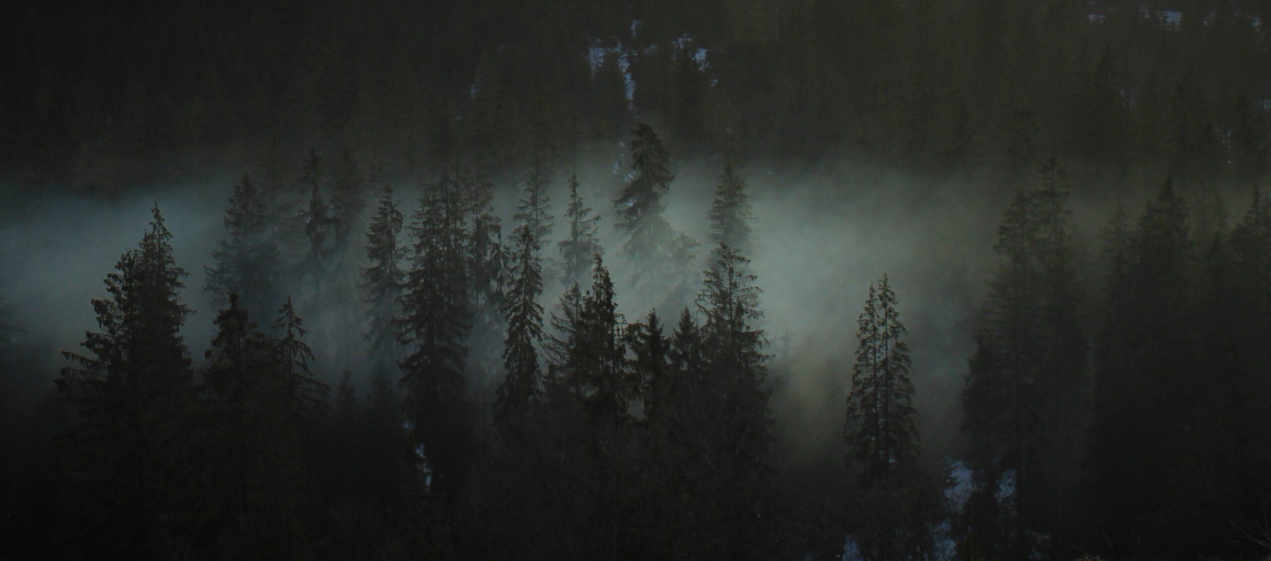 """I miejsce, kategoria wiekowa 16-20 lat, podkategoria przyrodnicze zdjęcie krajobrazowe – Weronika Czarnocka """"Biały welon"""""""